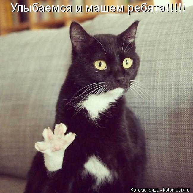 Котоматрица: Улыбаемся и машем ребята!!!!!