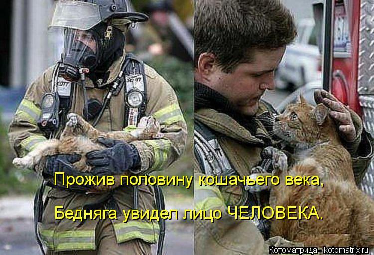 Котоматрица: Прожив половину кошачьего века, Бедняга увидел лицо ЧЕЛОВЕКА.