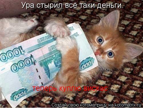 Котоматрица: Ура стырил всё таки деньги теперь куплю вискас