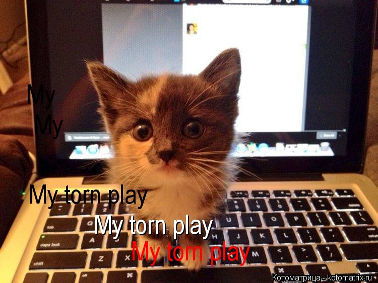 Котоматрица: My torn play My torn play My torn play My  My