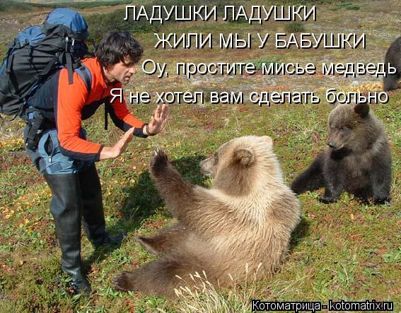 Котоматрица: ЛАДУШКИ ЛАДУШКИ ЖИЛИ МЫ У БАБУШКИ Оу, простите мисье медведь Я не хотел вам сделать больно