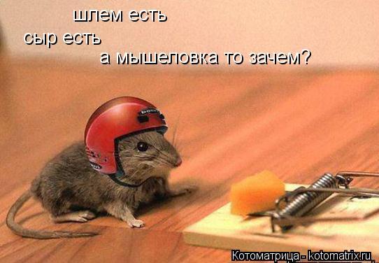 Котоматрица: шлем есть шлем есть сыр есть а мышеловка то зачем?