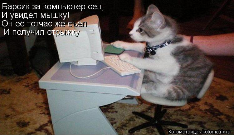 Котоматрица: Барсик за компьютер сел, И увидел мышку! Он её тотчас же съел И получил отрыжку