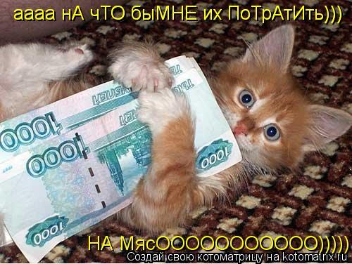Котоматрица: аааа нА чТО быМНЕ их ПоТрАтИть))) НА МясООООООООООО))))) аааа нА чТО быМНЕ их ПоТрАтИть)))