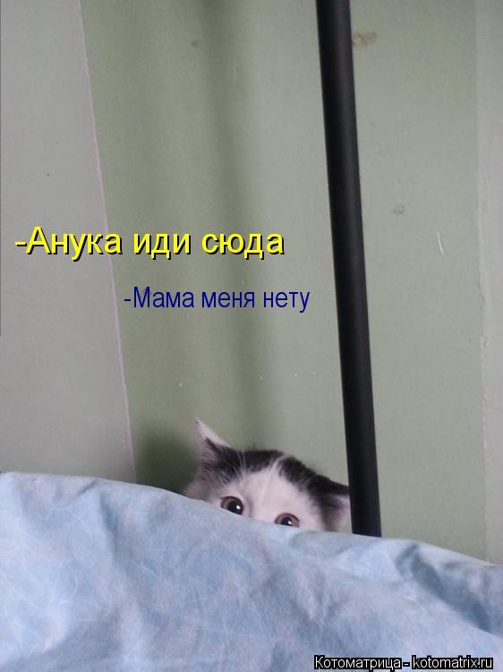 Котоматрица: -Мама меня нету  -Анука иди сюда