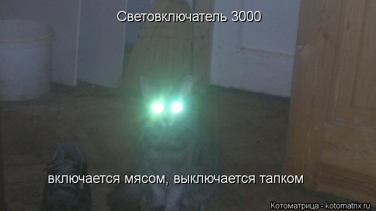 Котоматрица: Световключатель 3000 включается мясом, выключается тапком