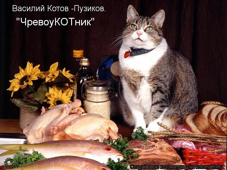 """Котоматрица: """"ЧревоуКОТник"""" Василий Котов -Пузиков."""