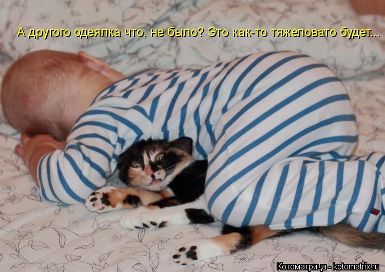 Котоматрица: А другого одеялка что, не было? Это как-то тяжеловато будет...