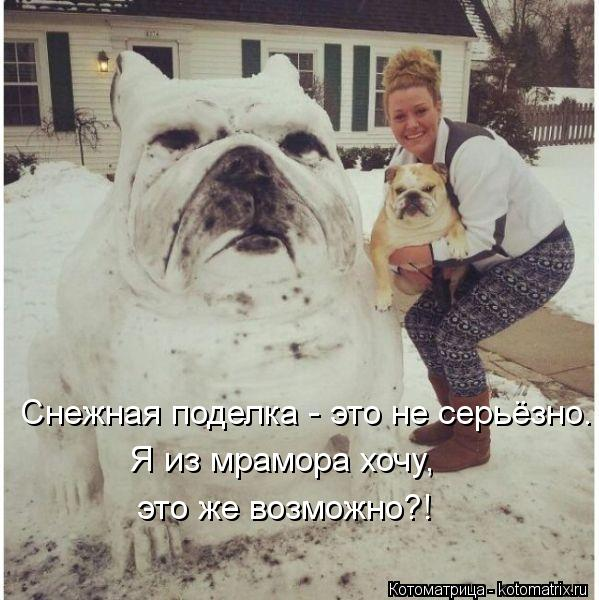Котоматрица: Снежная поделка - это не серьёзно. Я из мрамора хочу, это же возможно?!