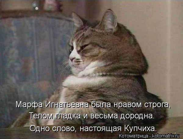 Котоматрица: Марфа Игнатьевна была нравом строга, Телом гладка и весьма дородна. Одно слово, настоящая Купчиха.