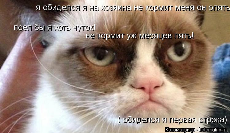 Котоматрица: я обиделся я на хозяина не кормит меня он опять!  поел бы я хоть чуток! не кормит уж месяцев пять! ( обиделся я первая строка)