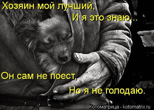 Котоматрица: Хозяин мой лучший, И я это знаю... Он сам не поест, Но я не голодаю.