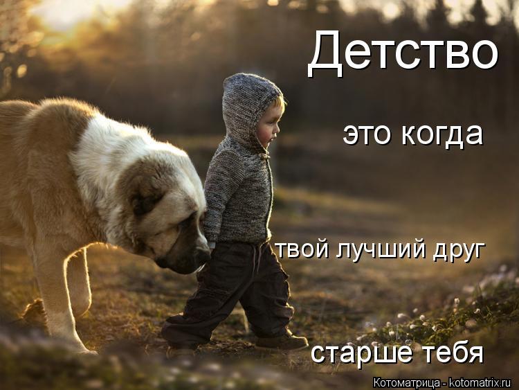 Котоматрица: Детство это когда  твой лучший друг старше тебя