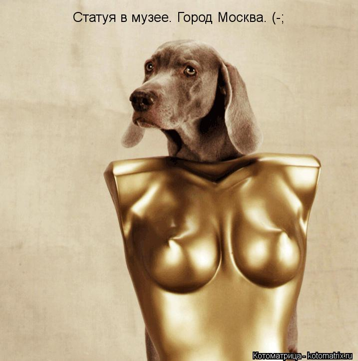 Котоматрица: Статуя в музее. Город Москва. (-;