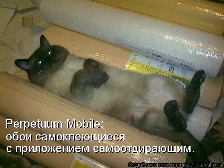 Котоматрица: Perpetuum Mobile: обои самоклеющиеся с приложением самоотдирающим.