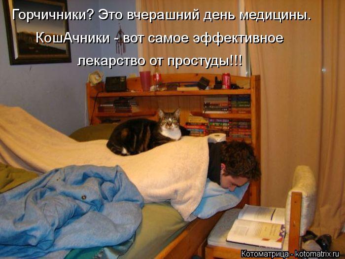 Котоматрица: Горчичники? Это вчерашний день медицины. КошАчники - вот самое эффективное лекарство от простуды!!!