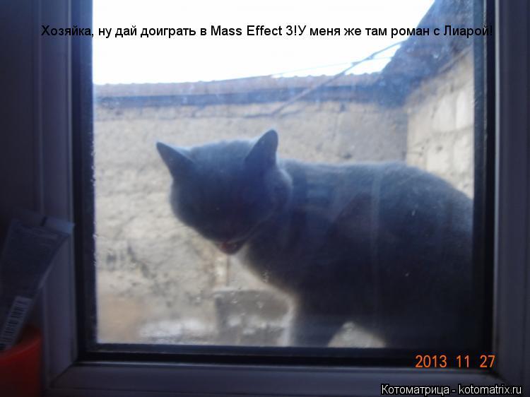 Котоматрица: Хозяйкаю Хозяйка, ну дай доиграть в Mass Effect 3!У меня же там роман с Лиарой!