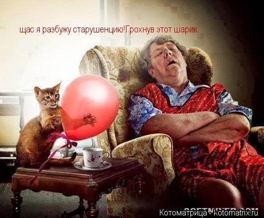 Котоматрица: щас я разбужу старушенцию!Грохнув этот шарик