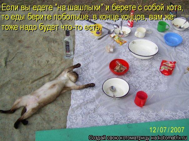"""Котоматрица: Если вы едете """"на шашлыки"""" и берете с собой кота, то еды берите побольше, в конце концов, вам же тоже надо будет что-то есть."""