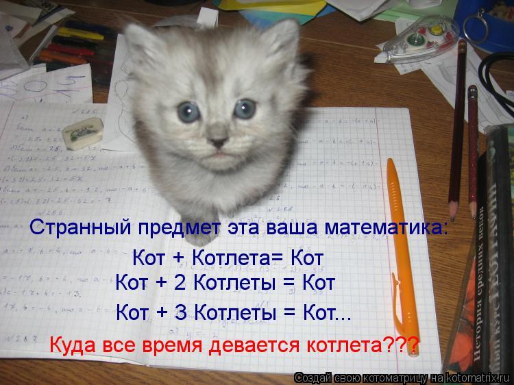 Котоматрица: Странный предмет эта ваша математика: Кот + Котлета= Кот Кот + 2 Котлеты = Кот Кот + 3 Котлеты = Кот... Куда все время девается котлета???