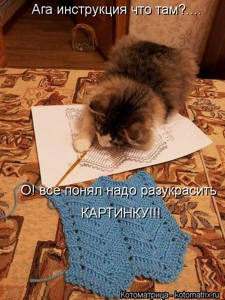 Котоматрица: Ага инструкция что там?....  О! все понял надо разукрасить КАРТИНКУ!!!