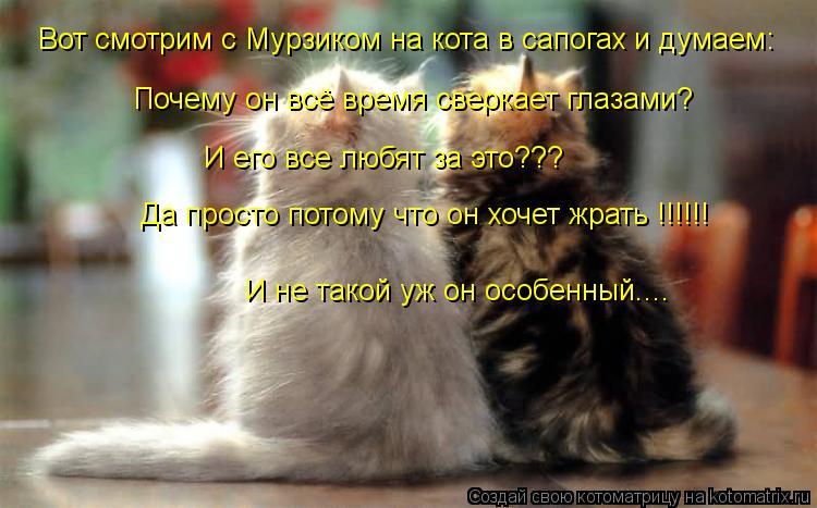Котоматрица: Вот смотрим с Мурзиком на кота в сапогах и думаем: Почему он всё время сверкает глазами? И его все любят за это??? Да просто потому что он хоче
