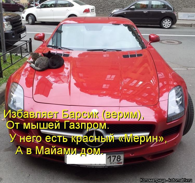 Котоматрица: Избавляет Барсик (верим),  От мышей Газпром. У него есть красный «Мерин», А в Майами дом.