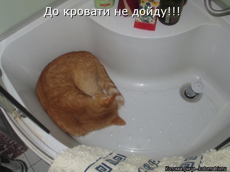Котоматрица: До кровати не дойду!!!