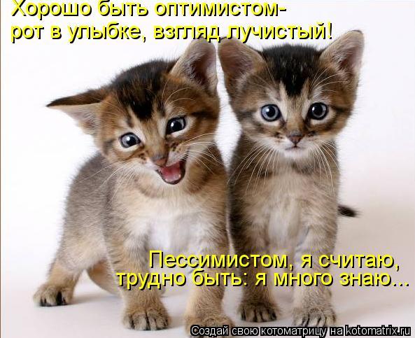 Котоматрица: Хорошо быть оптимистом- рот в улыбке, взгляд лучистый! Пессимистом, я считаю, трудно быть: я много знаю...