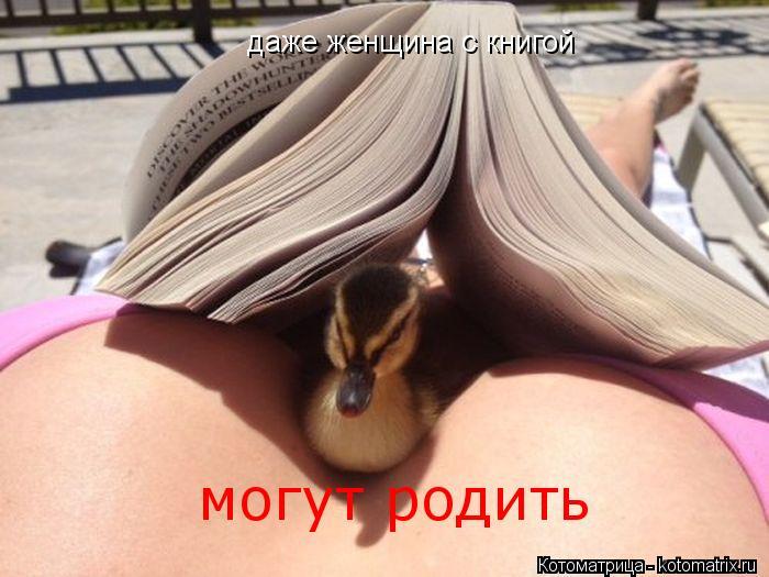 Котоматрица: даже женщина с книгой даже женщина с книгой могут родить