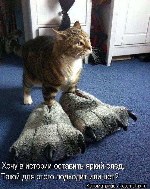 http://kotomatrix.ru/images/lolz/2013/12/03/kotomatritsa_BI.jpg
