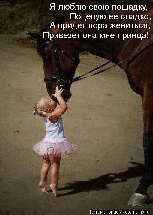 Котоматрица: Я люблю свою лошадку, Поцелую ее сладко, А придет пора жениться, Привезет она мне принца!