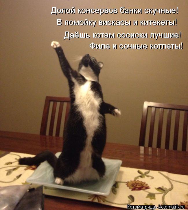 Котоматрица: Долой консервов банки скучные! В помойку вискасы и китекеты! Даёшь котам сосиски лучшие! Филе и сочные котлеты!