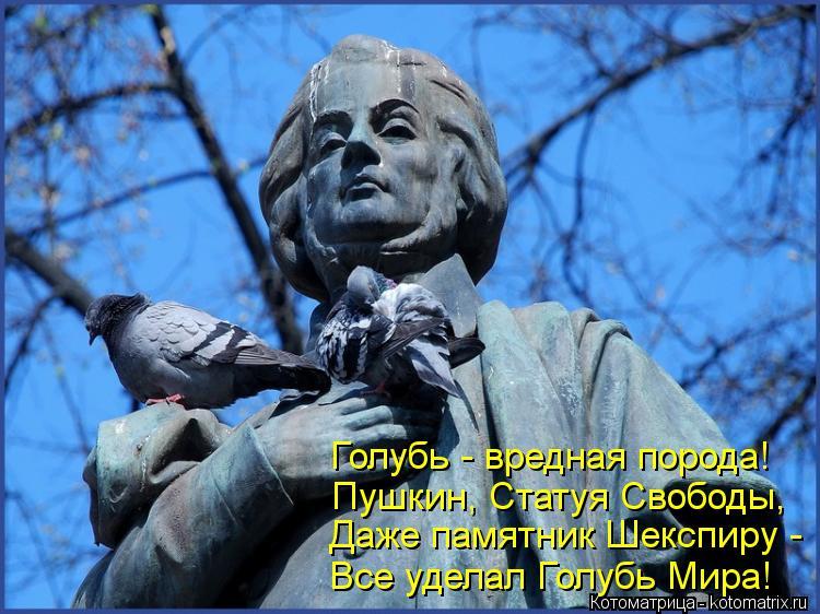 Котоматрица: Даже памятник Шекспиру - Все уделал Голубь Мира! Голубь - вредная порода! Пушкин, Статуя Свободы,