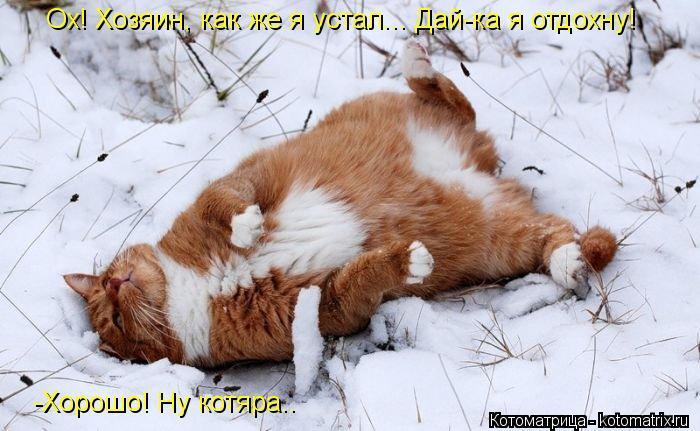 Котоматрица: Ох! Хозяин, как же я устал... Дай-ка я отдохну! -Хорошо! Ну котяра..