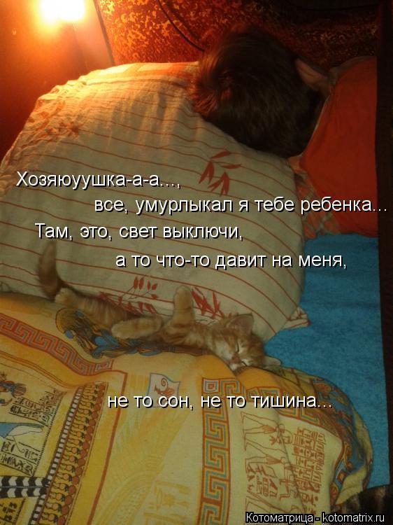 Котоматрица: Хозяюуушка-а-а...,  все, умурлыкал я тебе ребенка... Там, это, свет выключи, а то что-то давит на меня, не то сон, не то тишина...