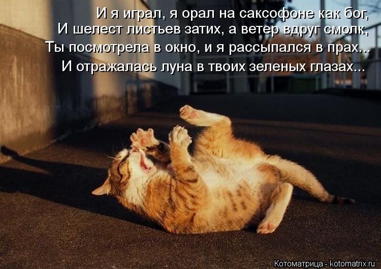 Котоматрица: И я играл, я орал на саксофоне как бог, И шелест листьев затих, а ветер вдруг смолк, Ты посмотрела в окно, и я рассыпался в прах... И отражалась