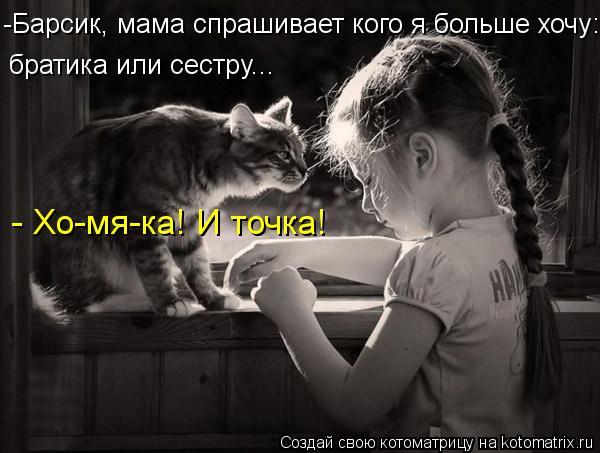Котоматрица: -Барсик, мама спрашивает кого я больше хочу: братика или сестру... - Хо-мя-ка! И точка!