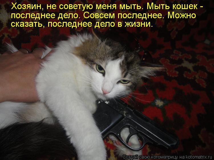 Котоматрица: Хозяин, не советую меня мыть. Мыть кошек - последнее дело. Совсем последнее. Можно  сказать, последнее дело в жизни.