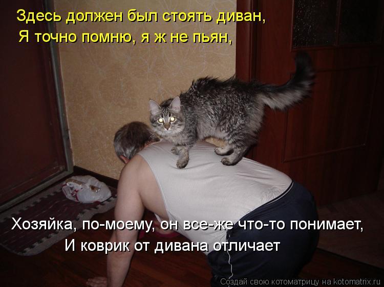 Котоматрица: Здесь должен был стоять диван, Я точно помню, я ж не пьян, Хозяйка, по-моему, он все-же что-то понимает, И коврик от дивана отличает
