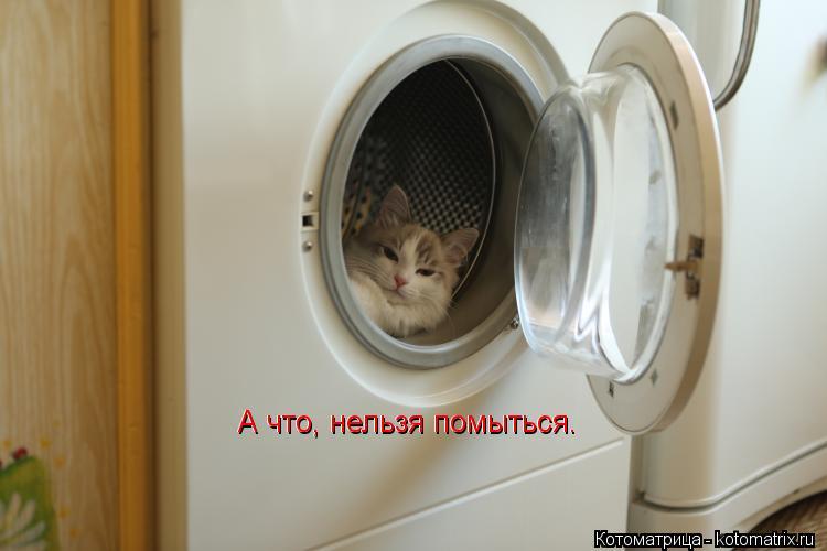 Котоматрица: А что, нельзя помыться. А что, нельзя помыться.