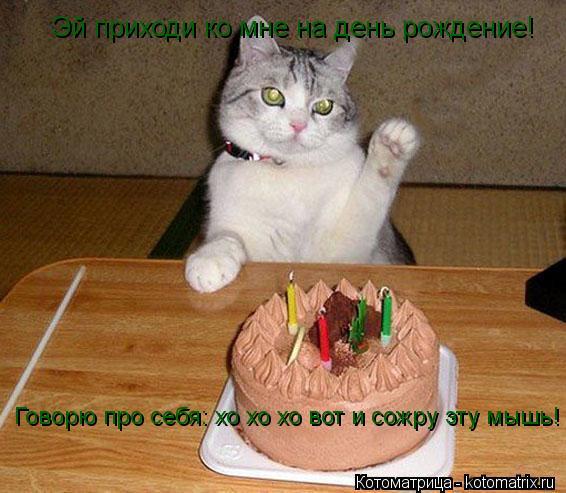 Котоматрица: Эй приходи ко мне на день рождение! Говорю про себя: хо хо хо вот и сожру эту мышь!