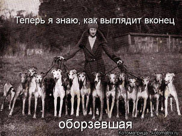 http://kotomatrix.ru/images/lolz/2013/12/08/kotomatritsa_0D.jpg