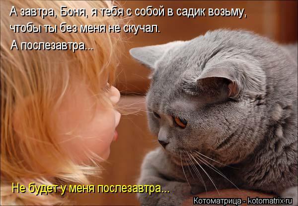 Котоматрица: А завтра, Боня, я тебя с собой в садик возьму, чтобы ты без меня не скучал. А послезавтра... Не будет у меня послезавтра...