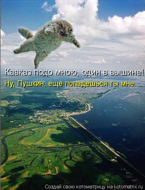 Котоматрица: Кавказ подо мною, один в вышине! Ну, Пушкин, ещё попадешься ты мне...
