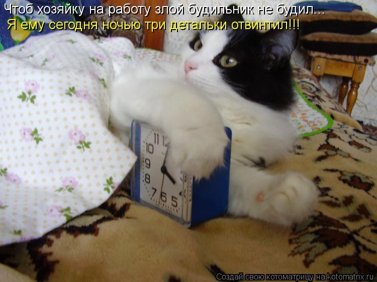 Котоматрица: Чтоб хозяйку на работу злой будильник не будил... Я ему сегодня ночью три детальки отвинтил!!!