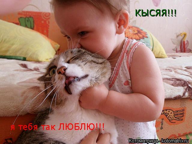 Котоматрица: КЫСЯЯ!!! я тебя так ЛЮБЛЮ!!!