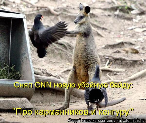 """Котоматрица: """"Про карманников и кенгуру."""" Снял CNN новую убойную байду:"""