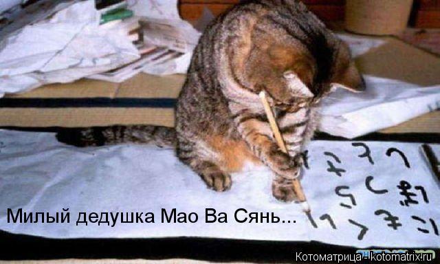 Котоматрица: Милый дедушка Мао Ва Сянь...