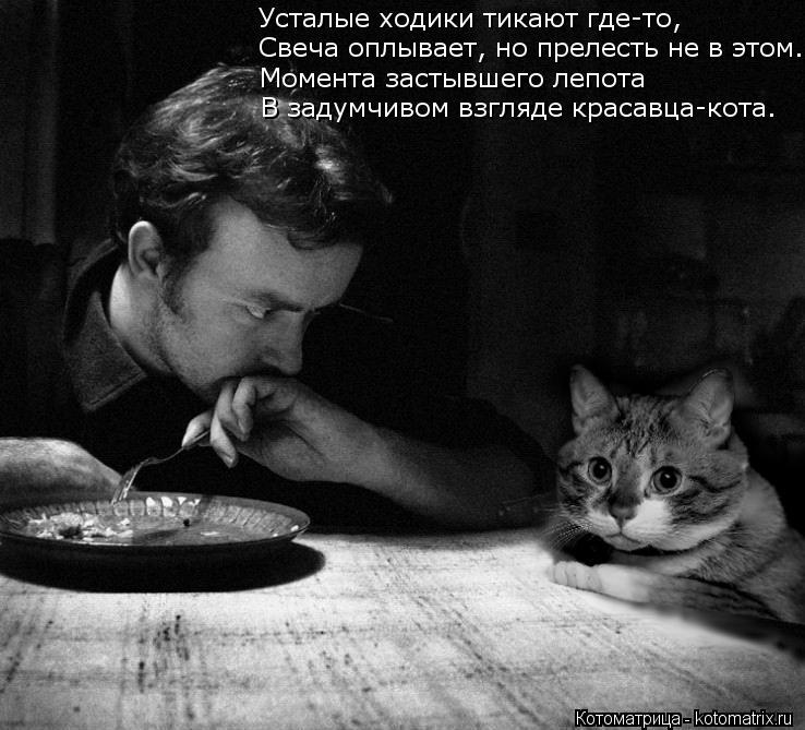 Котоматрица: Усталые ходики тикают где-то, Свеча оплывает, но прелесть не в этом. Момента застывшего лепота В задумчивом взгляде красавца-кота.